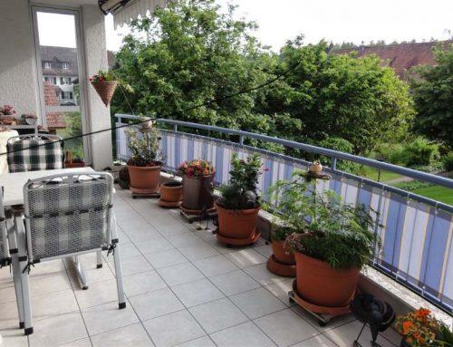 Balkonumrandung – Balkon Sichtschutz